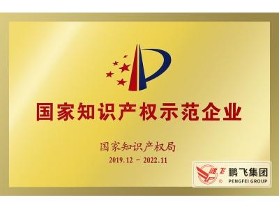(2019年12月)国家知识产权示范企业2